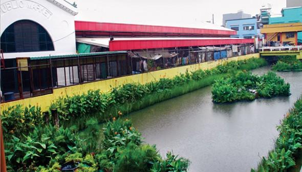 Sistema ecol gico permite recuperar rios polu dos for Recuperar agua piscina verde