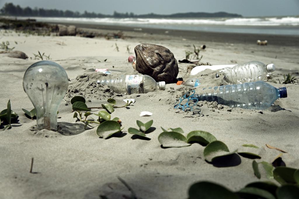 5445e57f53b2 O lixo na praia e as consequências para o meio ambiente - Pensamento ...
