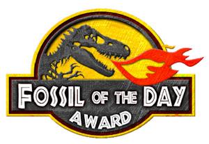 Fóssil do Dia
