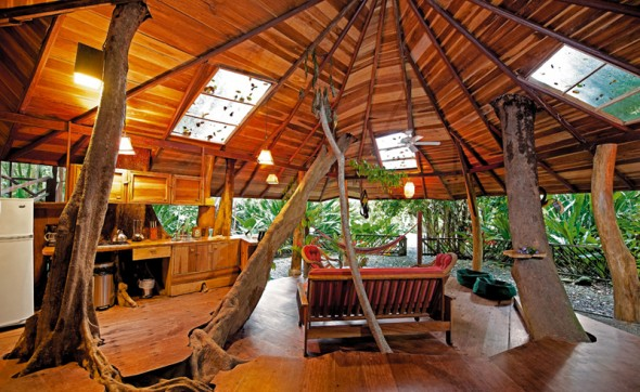 Tree House Lodge