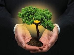 Empresa Sustentável