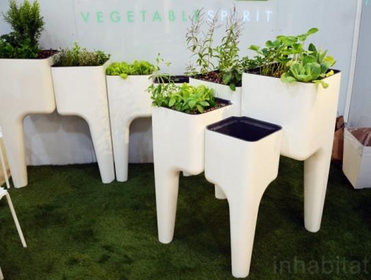 Kiga Kitchen Garden