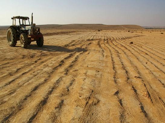 agricultura ameaçada
