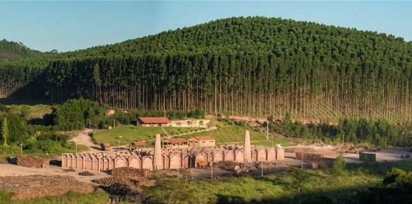 Fazenda Usina Guaxupé