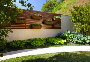 Horta Vertical 2
