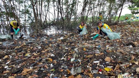 Lixo no mangue