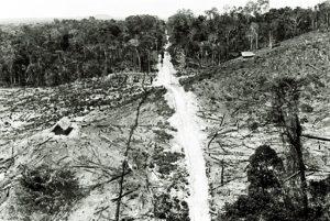Construção da Rodovia Belém-Brasília