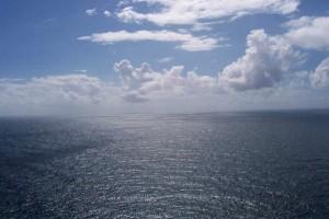 Acidificação do oceano