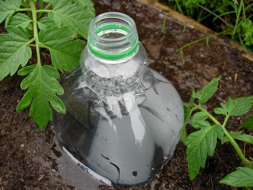 Gotejador para horta