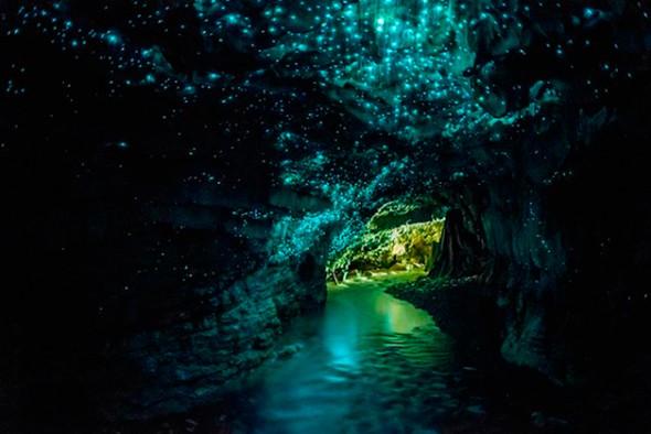 Caverna Waitomo Glowworm, Nova Zelândia
