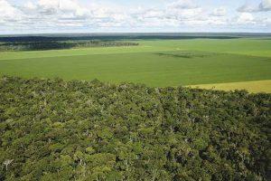 Agricultura na Amazônia