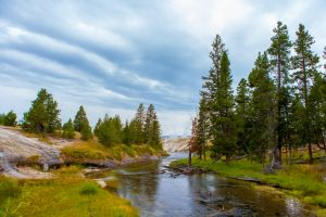 Yellowstone National Park View