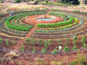 Sistema agrícola mandala