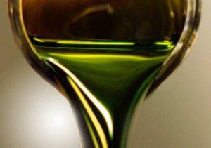 Biodiesel de alga
