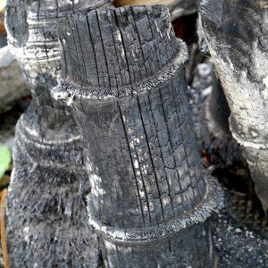 Carvão de bambu