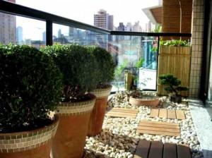 Replantar plantas