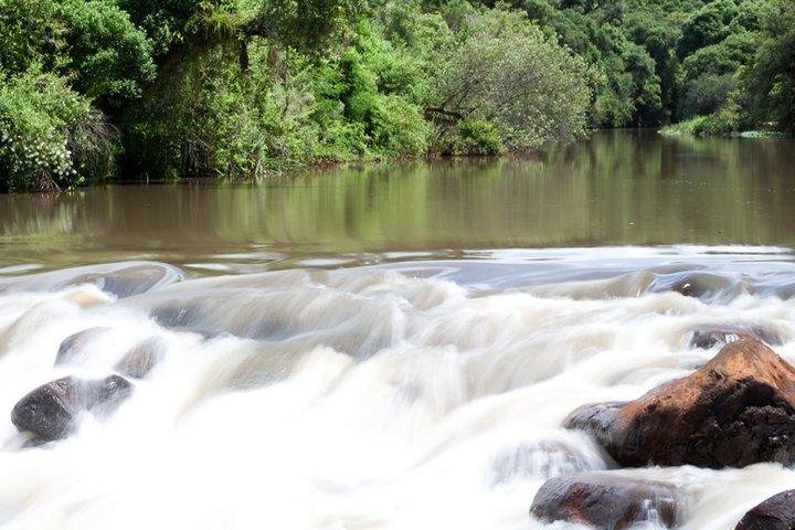 Empresa fabricante de pap is adota a es para minimizar for Recuperar agua piscina verde